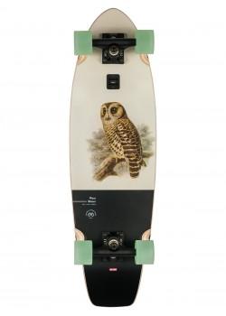"""Wave Blazer 31"""" - Hoot Owl"""